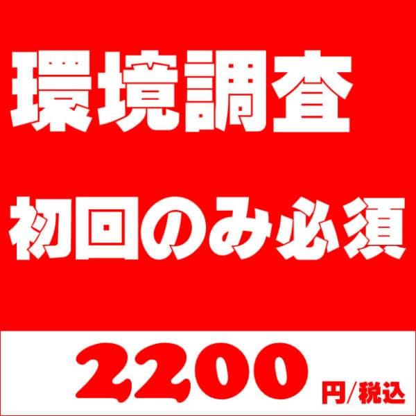 環境調査(サーバー・ドメイン・FTP・CMS/Wordpress)